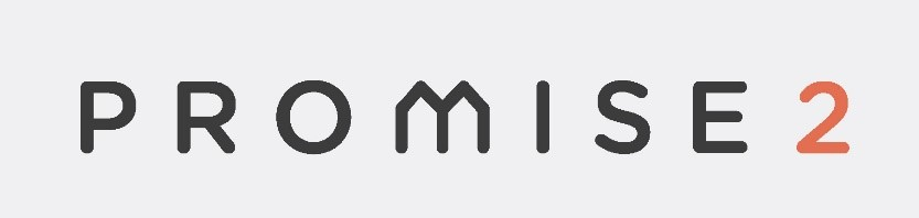 Promise 2 logo